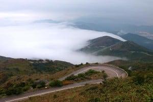 Tai Mo Shan Road | 大帽山道