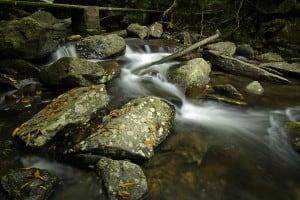 Bride's Pool Nature Trail | 船灣新娘潭自然教育徑