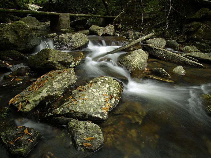 Bride's Pool Nature Trail