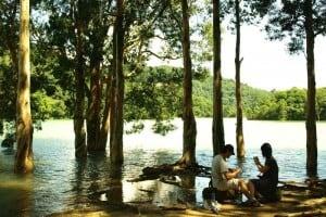 Rainy Season in Shing Mun Reservoir 城門水塘雨季